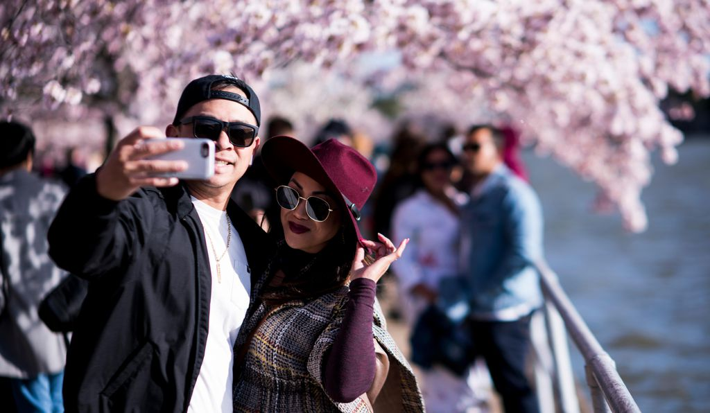 Cherry blossom selfies abound