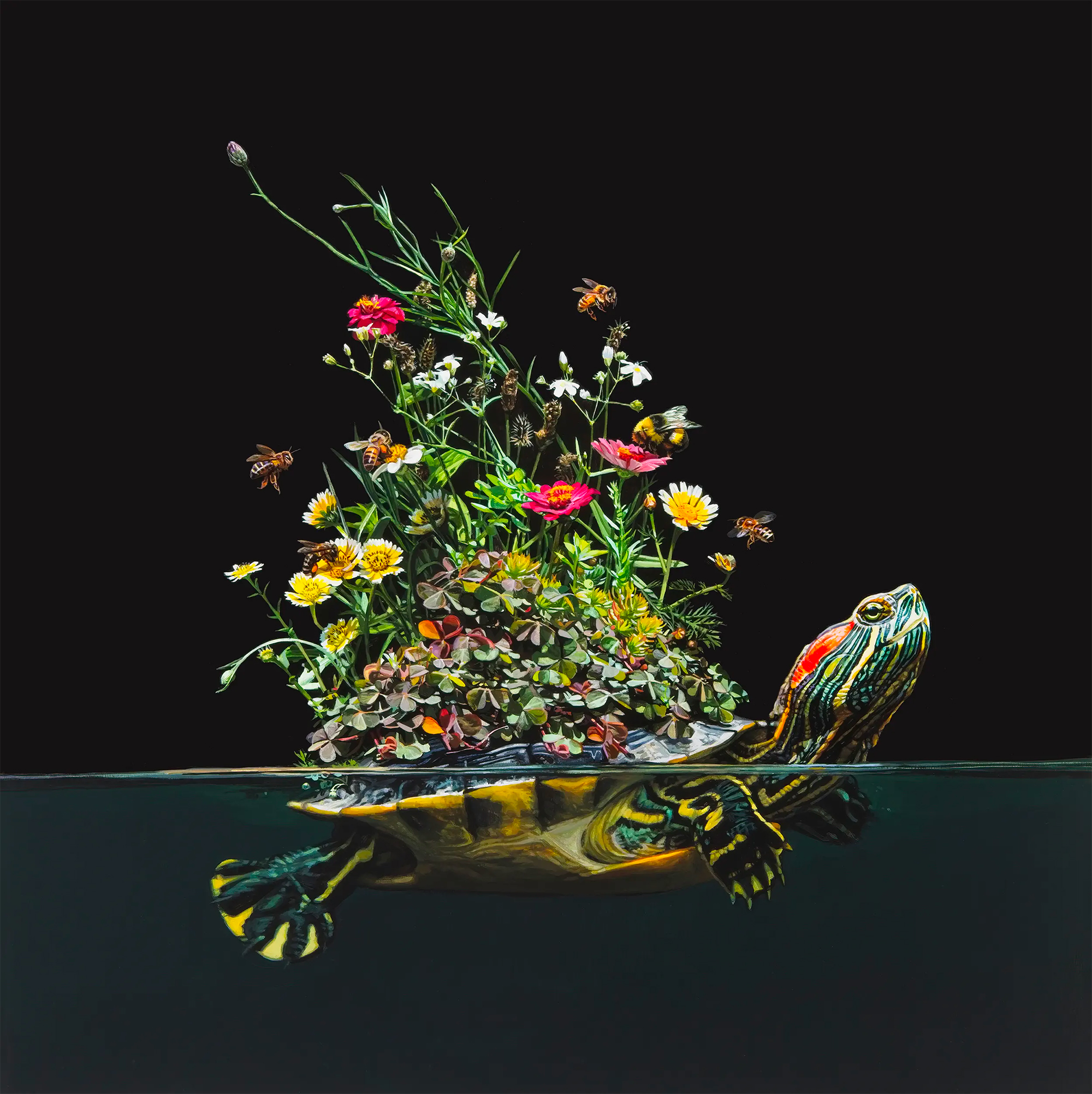 Animals Evolve into Islands Teeming With Coral, Succulents, and Tropical Fish in Hyperrealist Paintings by Lisa Ericson