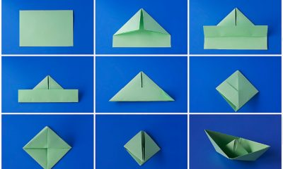 The Best Origami Papers for Beginners and Experts Alike